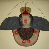 Insect Kite from Museum of New Mexico